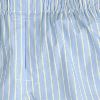 boxers in cool river stripe