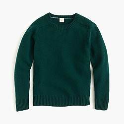 Boys' lambswool crewneck sweater
