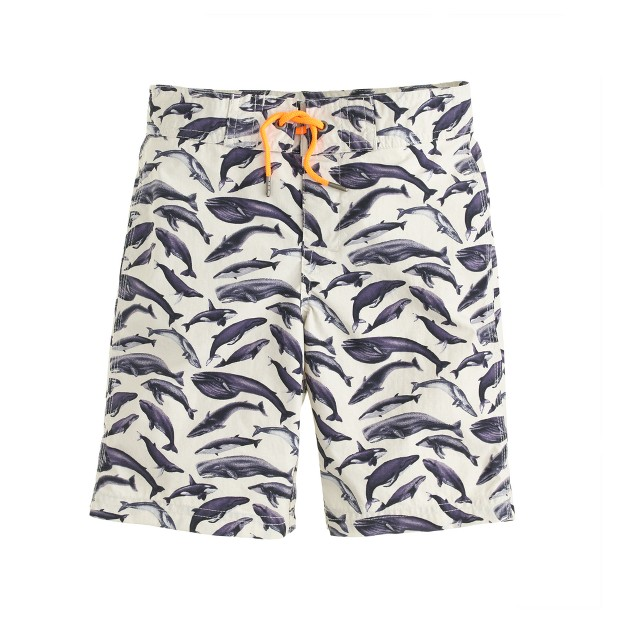 Boys' board short in whale print