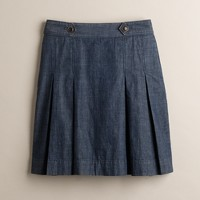 Retro-chambray Wendy skirt