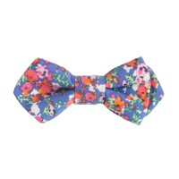 Boys' Liberty print bow tie