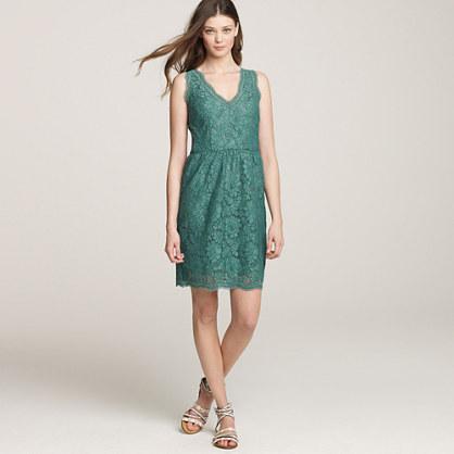 Oleander lace shift dress