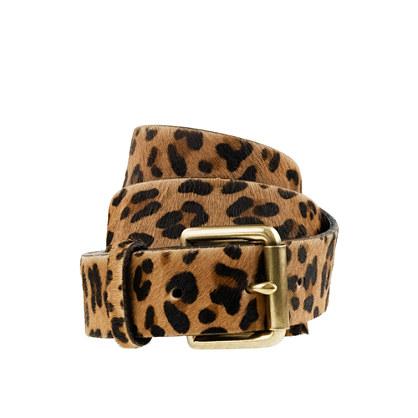 Wide calf hair belt