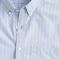 Slim end-on-end cotton shirt in bold lime stripe