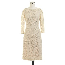 Petite Natalia dress in Leavers lace