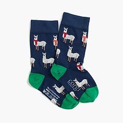 Boys' Corgi™ for crewcuts patterned socks