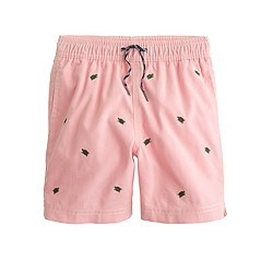 Boys' oxford cloth swim trunk with turtles