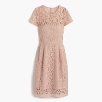 Alisa dress in Leavers lace