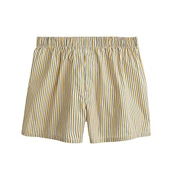 Golden-striped boxers