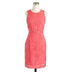 Petite sleeveless floral lace sheath dress