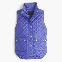 Shiny quilted field puffer vest