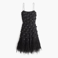 Collection feather flapper dress