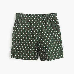Boys' holiday boxers