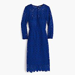 Collection lace sheath dress