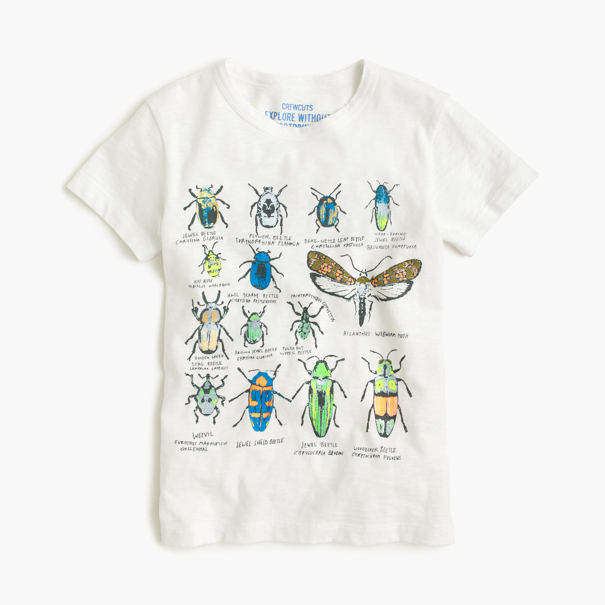 Boys 39 bug t shirt j crew for I like insects shirt