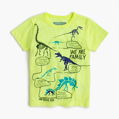 "Boys' ""we are family"" dinosaur T-shirt in the softest jersey"