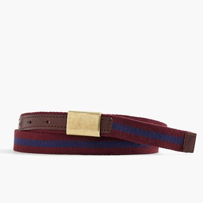 Fabric plaque belt