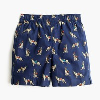 Boys' bird-watching dog boxers