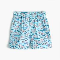 Boys' flamingo boxers